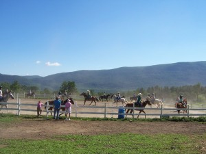 Riding Camps at Mountain View Ranch Photo